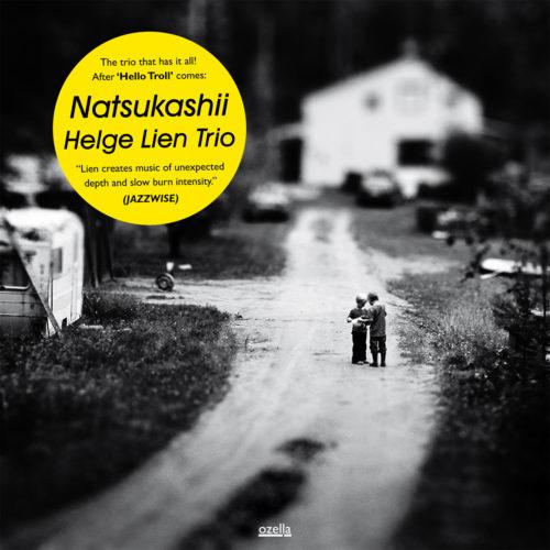 Natsukashii - Vinyl