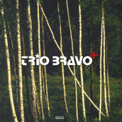 Trio Bravo