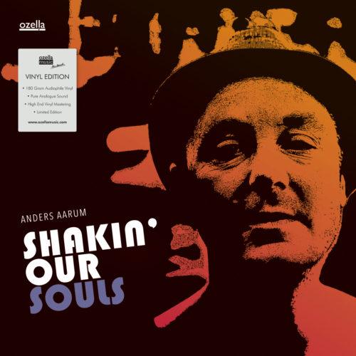 Shakin' Our Souls - Vinyl