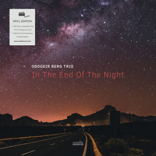 In the end of the night - Vinyl
